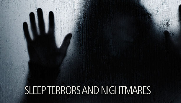 Sleep Terror Nightmare