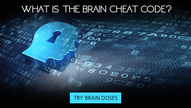What Brain Cheat Code?