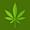 Meditate With Marijuana
