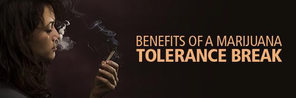 Benefits Of A Tolerance Break