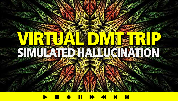 Simulate DMT NOW!