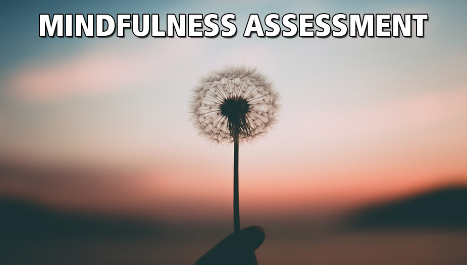 Mindfulness Assessment